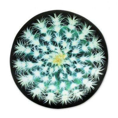 Nietypowy Jasiek Relaksacyjny - Kaktus