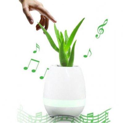 Grająca Doniczka Bluetooth Rockin Beethoven - zagraj na swoim ulubionym kwiecie