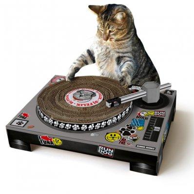 Skreczujący Drapak Dla Kota - naucz kota miksowania!