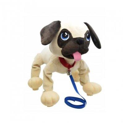 Psi Rozrabiaka Boogie - zabierz go na spacer i baw się z nim!