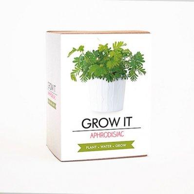 Zestaw nasion do uprawy