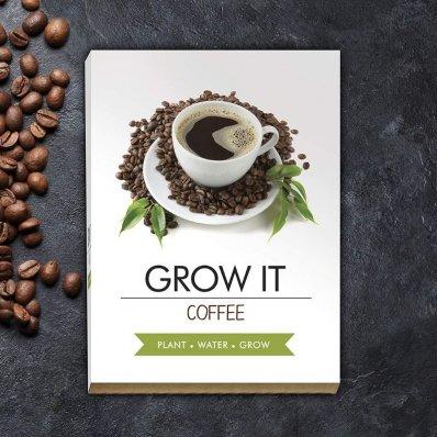 Domowa hodowla kawy